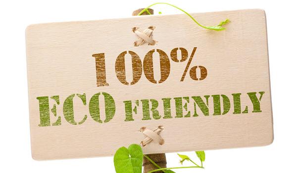Eco Friendly Laundry Detergent Alternatives
